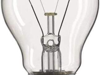 Eveready 100W Rough Service GLS Light Bulb